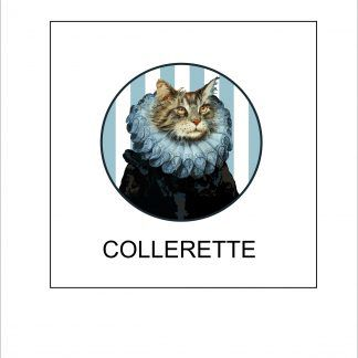 Chat Collerette